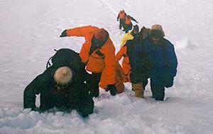 antarctica-The team